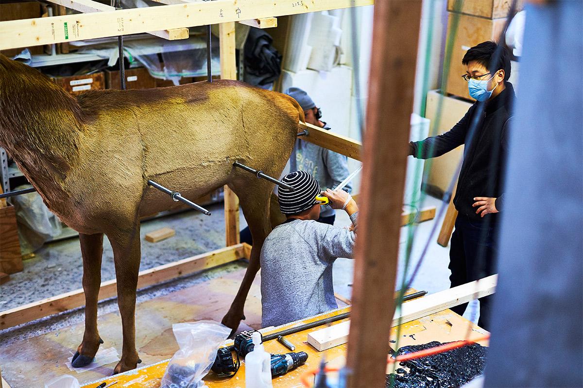 deer-6-wtc-kohei-nawa-by-paul-barbera-02